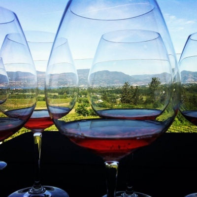 looking through wine glass at landscape