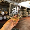 Glass of white wine at Treasure Island Wines
