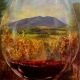 mountains and vineyards viewed through a wine glass